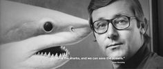 Peter Benchley, Shark Fin Soup, Fact And Opinion, Shark Week, Sharks, Oceans, New York City, Quotations, The Creator