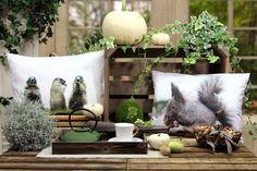 Kissen mit Digitaldruck: Murmeltier ALLAN und Eichhörnchen SQUIRREL. Beides von Sander.