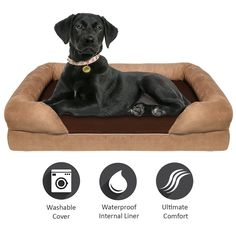 Orthopedic Memory Foam Dog Bed w// removable cover /& waterproof blanket 2-in-1
