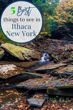 Hiking trails, waterfalls, gorges and more! : Hiking trails, waterfalls, gorges and more! New York Travel, Travel Usa, Travel Tips, Travel Guides, Travel With Kids, Family Travel, Lake George Village, I Love Ny, Upstate New York