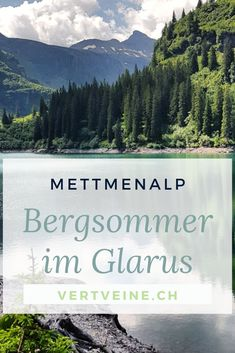 Sommerwanderung in den Glarner Alpen: Von Mettmen zur Leglerhütte & zurück. - vertveine.ch – nachhaltig geniessen Mall Of America, North America, Reisen In Europa, Royal Caribbean Cruise, London Pubs, Beach Trip, Beach Travel, Swiss Alps, England Uk