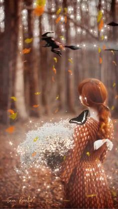 Beautiful Girl Video, Beautiful Photos Of Nature, Beautiful Gif, Beautiful Roses, Romantic Drawing, Romantic Gif, Another Misaki Mei, Disney Pumpkin Carving, Good Evening Wishes