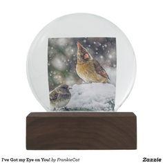 I've Got my Eye on You! Snow Globe