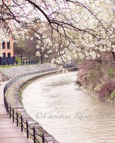 Syracuse Creekwalk