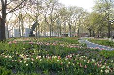 Battery Park - Jacqueline van der Kloet