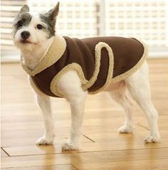 Dog Jacket Pattern There are a few main reasons people are putting apparel on their dogs. Dog Coat Pattern, Sew Pattern, Jacket Pattern, Pet Coats, Dog Clothes Patterns, Sewing Patterns, Coat Patterns, Dog Jacket, Dog Wear