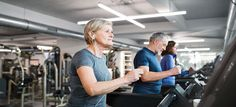 Stem Cell Studies Build Momentum toward Therapy for Age-Associated Frailty | Miller School of Medicine | University of Miami