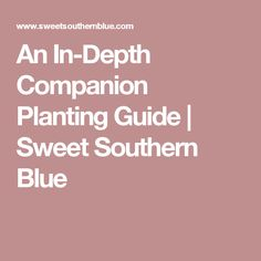 An In-Depth Companion Planting Guide | Sweet Southern Blue