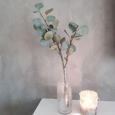lady minerals Decor, Vase, Glass Vase, Glass, Wall, Home Decor