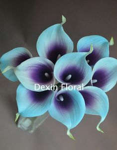 Blue Purple Picasso Calla Lilies 9 stems Real Touch Flowers for Silk Wedding… Church Wedding Flowers, Wedding Flower Decorations, Wedding Bouquets, Wedding Dresses, Purple Calla Lilies, Calla Lily, Blue Flowers, Purple Wedding, Wedding Colors