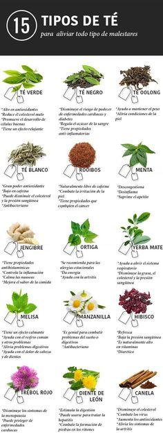 15 tés e infusiones para aliviar cualquier dolencia: