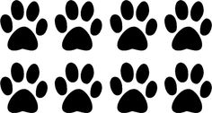 Dog Quot Paws Quot Plural In Case Of Emergency Rescue My Dogs