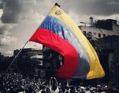 VENEZUELA LIBRE SIN BALAS Y SIN VIOLENCIA Y SIN FASISTAS #MADUROASESINO