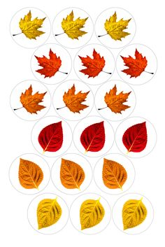 "Autumn Leaves   Bottle cap image pack  Formatted for printing on 4"" x 6"" photo paper"