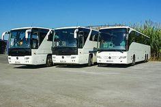 Io tours Buses!