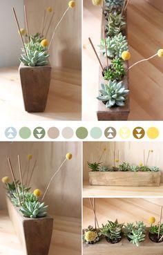Succulent planter <3