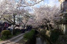 Paseo del filósofo de Kyoto