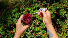 Brusinkový džem bez zavařování Pesto, Fruit, Chemistry