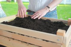 Filling box with dirt & planting seeds