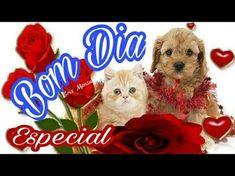 Linda Mensagem de Bom Dia - Te desejo um dia muito especial - Vídeo para WhatsAp.p - YouTube