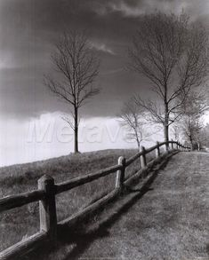 Ansel Adams is one of my all time favorite photographers. His black and white work is unmatched to this day.
