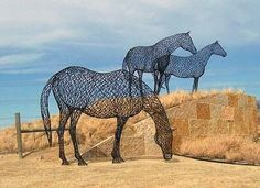 These contemporary wire sculptures graze in Austin Ranch just north of Dallas, created by Lucy Billingsly.