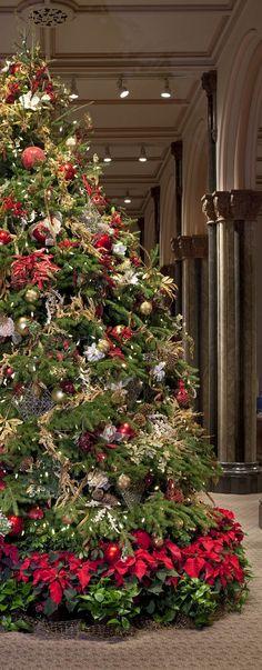 Christmas is Coming ~ Smithsonian Christmas Tree