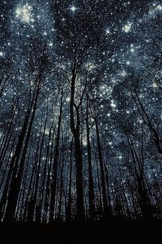 November 18: star-crossed \ STAHR-krawst, -krost \, adjective; 1. thwarted or opposed by the stars; ill-fated: star-crossed lovers
