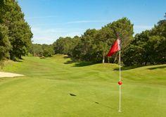 Optez pour un tournoi de golf entreprise à Seignosse avec déjeuner et remise des prix : http://www.sud-ouest-passion.fr/forfaits/competition-golf-entreprise-seignosse/