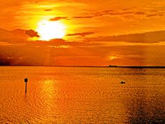 https://flic.kr/p/HqSAQd | Shimmering Tampa Bay, Rays Of Golden Sun - IMRAN™ | Every sunset is different, but nowhere do I see the stark differences and the stunning variations in the hues and shades of sunsets, seen from my blessed home in Apollo Beach, than on the expanse of Tampa Bay, Florida. The calm, almost lakelike tranquil waters, shimmering, like luxurious satin sheets, under the rays of the end-of-Spring sun, melting in hot white passion into the golden inviting folds of dark wet…