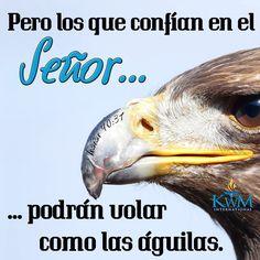 Pero los que confían en el Señor tendrán siempre nuevas fuerzas y podrán volar como las águilas; podrán correr sin cansarse y caminar sin fatigarse.