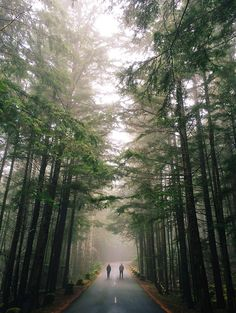 Road less traveled???  Maybe, but I would take it in a heartbeat!  Wanna come with?