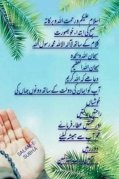 Morning Dua, Gd Morning, Good Morning Greetings, Morning Wish, Beautiful Morning Messages, Good Morning Images, Islamic Images, Islamic Love Quotes, Urdu Quotes