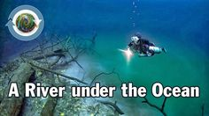 Is there a River Under the Sea ?