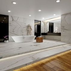 "QDI Surfaces Calacatta Royal 24"" x 24"" Porcelain Field Tile in White/Gray"