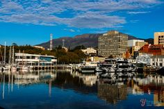 Looking for tips on what to do in Hobart, Tasmania? We spent 6 days exploring Hobart, here are our suggestions for things to do and where to eat and sleep. Beautiful Places To Visit, Cool Places To Visit, Places To Travel, Travel Destinations, Amazing Places, Vacation Places, Solo Travel, Travel Tips, Travel Around The World