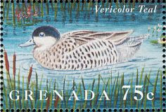 Silver Teal stamps - mainly images - gallery format