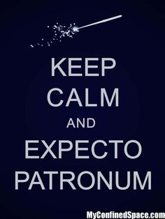 OMG - Love this - & Love Harry Potter!