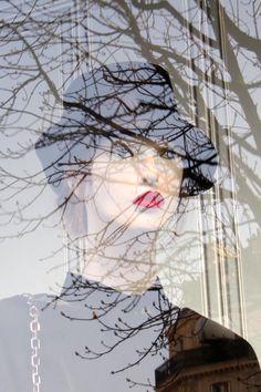 Reflet vitrine - arbre