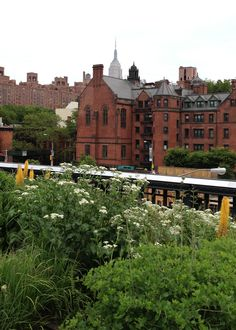 New York City: Highline walk and view of the Empire State Building Autumn In New York, High Line, Empire State Building, Jet Set, New York City, Nyc, America, Mansions, House Styles