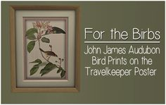 I wanted some new things to hang on walls, and I love John James Audubon's The Birds of America. So, I decided to combine the two. There are 30 different prints, admittedly of some of my favorite...