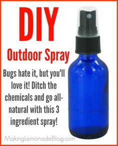 Homemade Outdoor and Camping Spray {Bugs HATE It!}