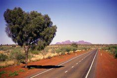 #priscilla #australia #star #alidays #travel #experiences