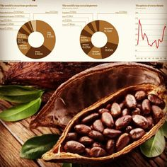 #cocoa #futures #prices #support is at 3000 usd  #trade with #free #bonus @ http://nuforex.com