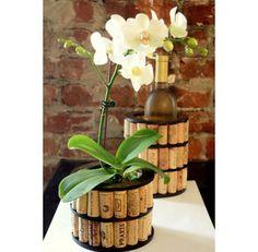 Customize um vaso de plantas com rolhas ao redor.