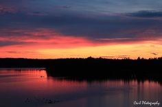 Sunset in Sweden. This is simply amazing! http://500px.com/photo/81386021/sunset-in-sweden-by-cecilie-sund-kristensen?from=user_library