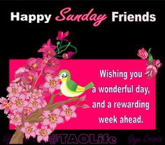 Have a wonderful sunday photos and quotes | Happy Sunday friends, wishing you a wonderful day and a rewarding week ...
