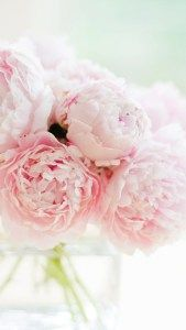 peonies-iphone-background-wallpaper-1 - Just Another Mummy Blog
