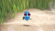 "But no one, NO ONE, is more important than Baby Dory. | Baby Dory Is The Cutest Part Of ""Finding Dory"" Or Any Movie Ever, Really"