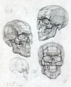 Ideas Medical Illustration Anatomy Book -You can find Anatomy and more on our Ideas Medical Illustration Anatomy Book - Anatomy Sketches, Anatomy Drawing, Drawing Sketches, Art Drawings, Human Anatomy Art, Human Figure Drawing, Figure Drawing Reference, Medical Drawings, Medical Art